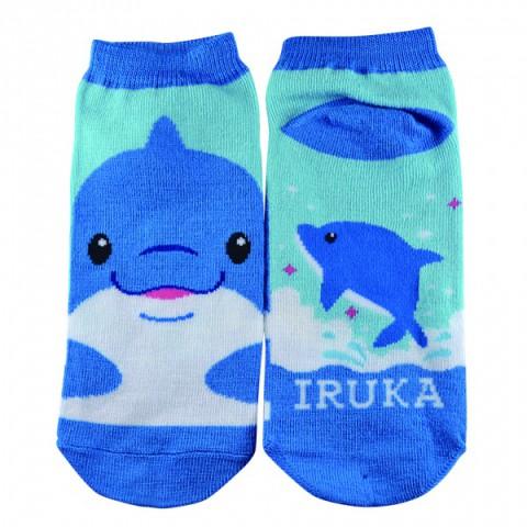 socks_iruka